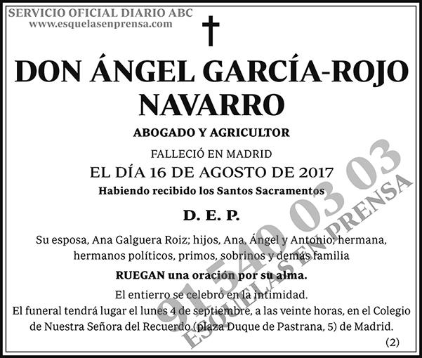 Ángel García-Rojo Navarro